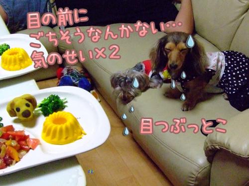 20080719_02--198.jpg