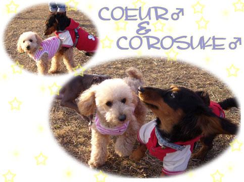 COEUR&COROSUKE★