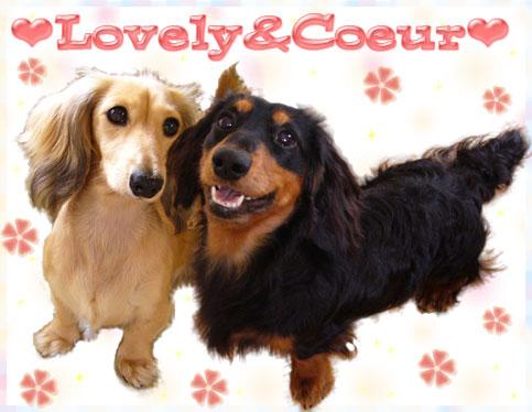 Lovely&Coeru