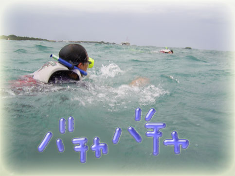 PIC_0017.jpg