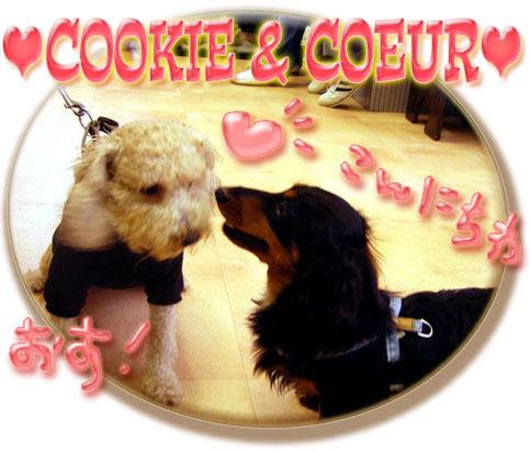 COOKIE&COEUR