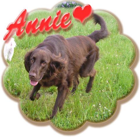 Annieちゃん♪