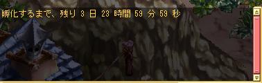 白羊ご降臨_04