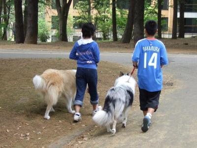 仲良くお散歩!