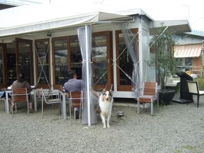 カフェとルーパス♪