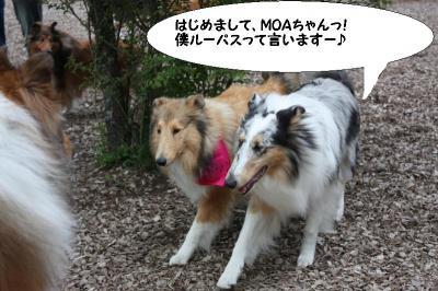 MOAちゃんと♪