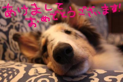 新年のごあいさつ!