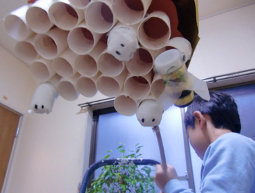 蜂の巣12