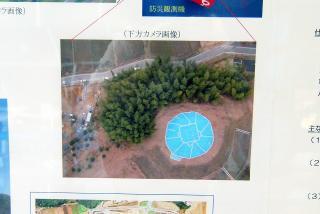 s-DSC_8990.jpg