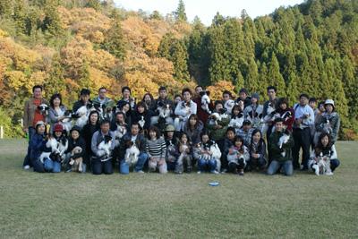 DSC08883-a.jpg