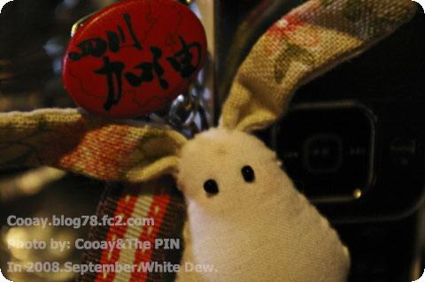 080907 White Dew SiChuan