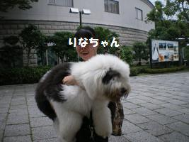 resize0130.jpg