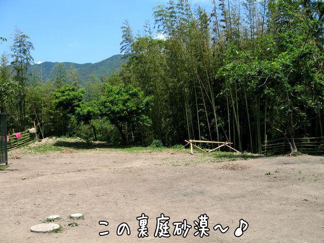 uraniwasabaku2.jpg