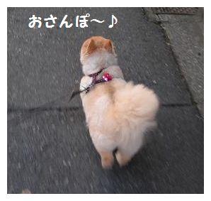 お散歩へ~