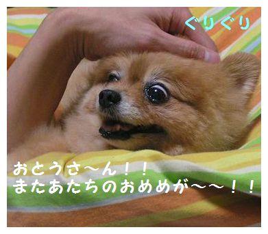 おとうさ~ん!!