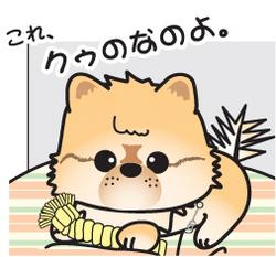 かわいい~♪