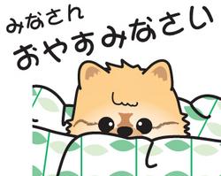 おやすみなさいの絵♪