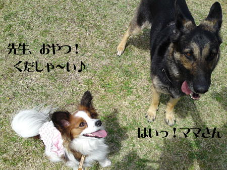 10041007_1.jpg
