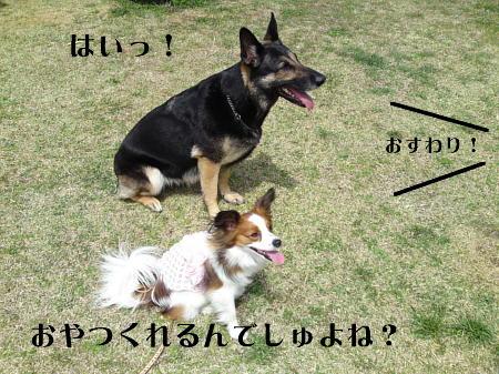 10041008_1.jpg