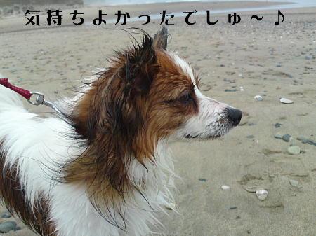 10062001_1.jpg