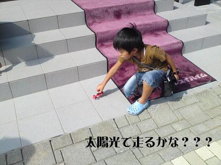 10073104_1.jpg