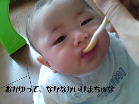 11071503_1.jpg