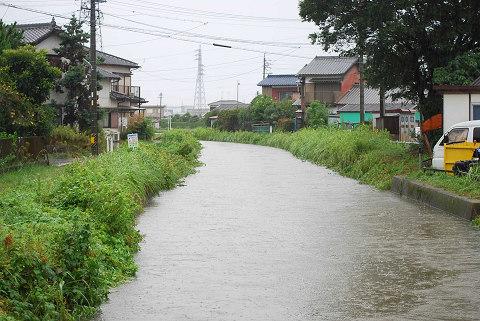 鹿乗川の濁流