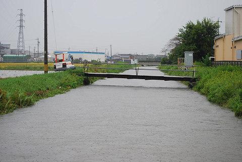 鹿乗川の濁流2