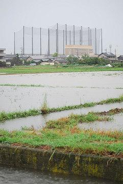 水に浸かる田んぼ