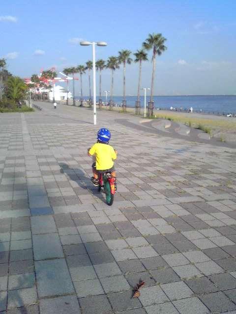 marinpark1.jpg