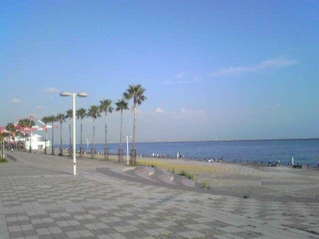 marinpark3.jpg