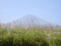富士山とすすき