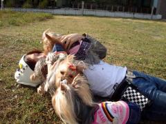 公園で寝ころぶ
