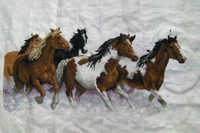 馬ー0224
