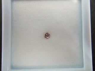 PINK DIAMOND1