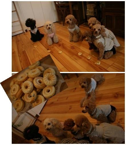 ドーナツと一緒