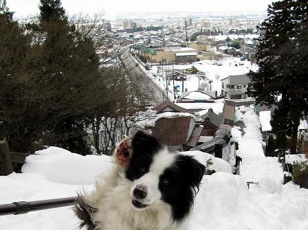 冬の飯盛山