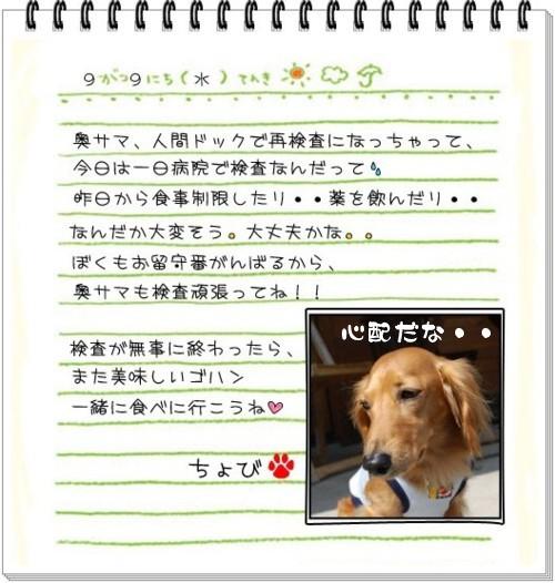3DSC_0385.jpg