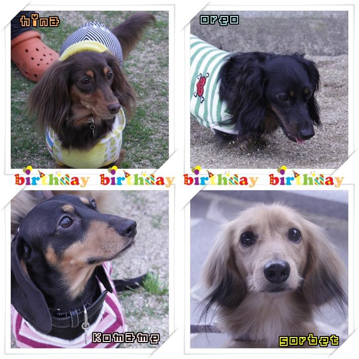 誕生日のコピー