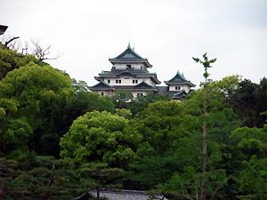 和歌山城はまたの機会に…。