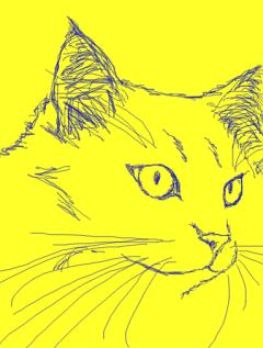 マウス描画ネコ・初長毛種240