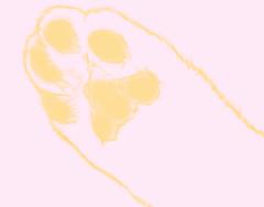 マウス描画肉球