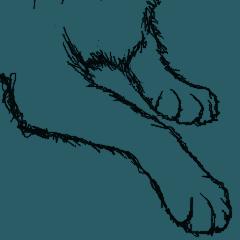 マウス描画ネコ・美ノラ