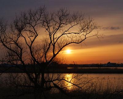 釧路川夕景