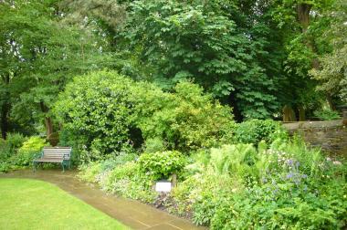 P1110015++bronte+garden+2_convert_20090615172936.jpg
