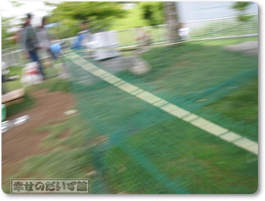 IMG_6963-003.jpg