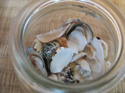 瓶詰め貝殻