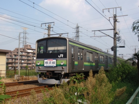 P9135785blog.jpg