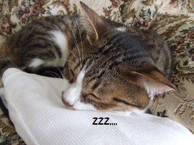 眠いんだ2