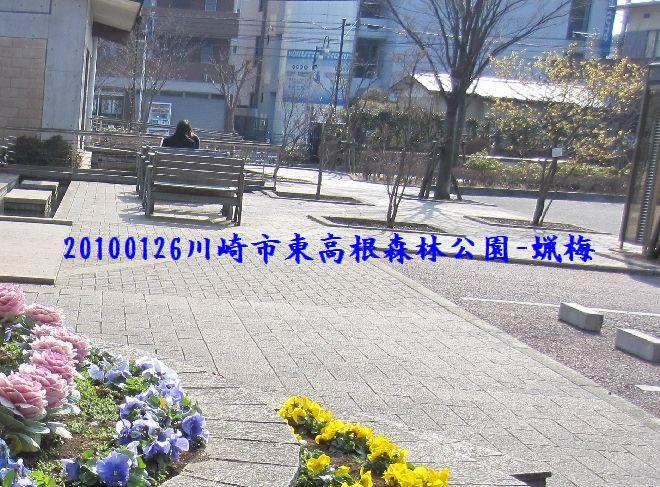100129higashi03